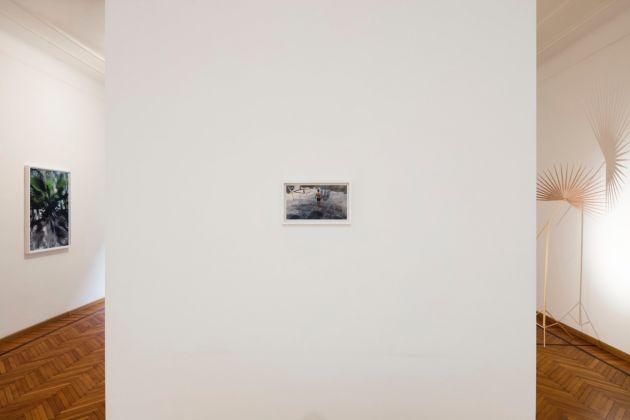 Rä di Martino. The day he swims thru Marrakech. Exhibition view at Galleria Monica De Cardenas, Milano 2017. Photo Andrea Rossetti