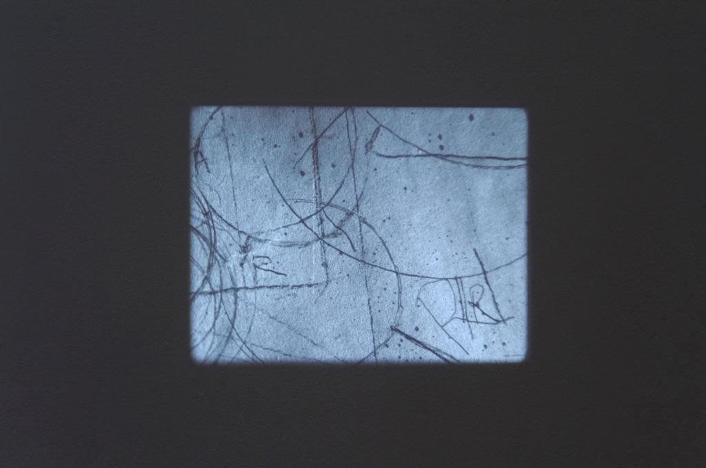 Tacita Dean, Still Life, 2009. Courtesy of the artist & Marian Goodman Gallery, Parigi-New York & Frith Street Gallery, Londra. Photo Poelzl