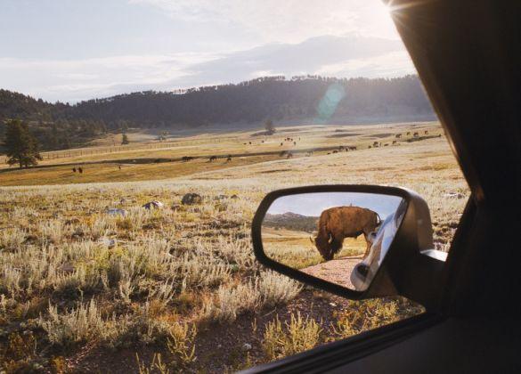 ©Rebecca Norris Webb, Rearview Mirror from My Dakota