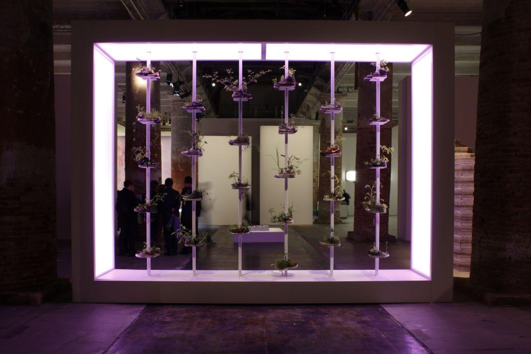 57. Biennale di Venezia, Arsenale, Michel Blazy, ph. Andrea Ferro