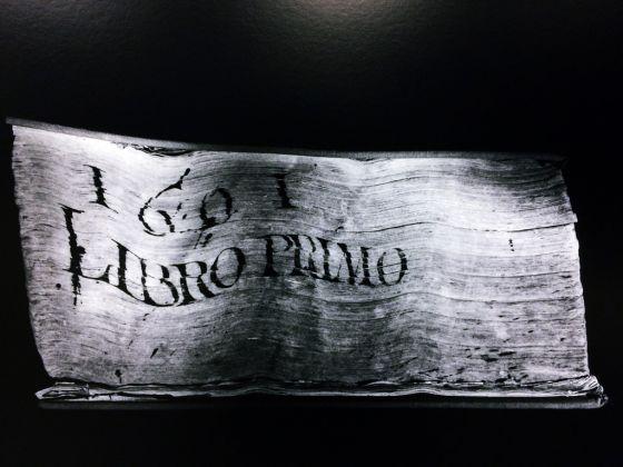 Antonio Biasucci, Codex. Exhibition view @ Magazzino, Roma 2017