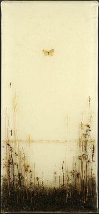 Enzo Fiore, Studio con farfalla, 2015 tecnica mista su tela (resina, terra, foglie, radici, insetti...)
