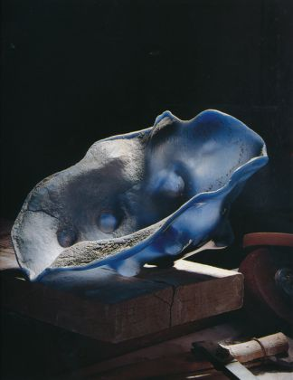 Gaetano Pesce, Sans titre n. 6, 1988-92. Photo Alberto Ferrero