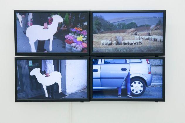 Gianfranco Baruchello, Adozione della pecora, 2016. Still da video. Courtesy Fondazione Baruchello. Photo credits Federico Maria Tribbioli