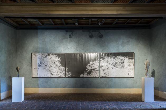 Granpalazzo 2017, Giorgio Andreotta Calò, Galleria William Lenta, ph. Sebastiano Luciano photography