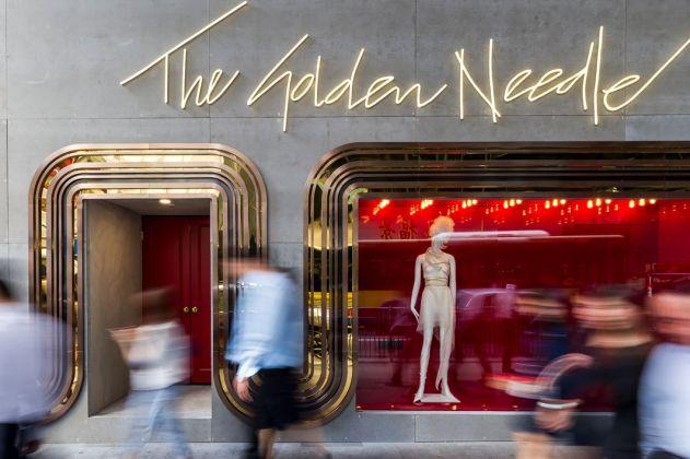 JOYCE, The Golden Needle