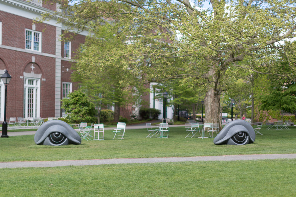 Louise Bourgeois, Eye Benches II, 1996-1997. Photo by Susan Young. © The Easton Foundation/Licensed by VAGA, NY
