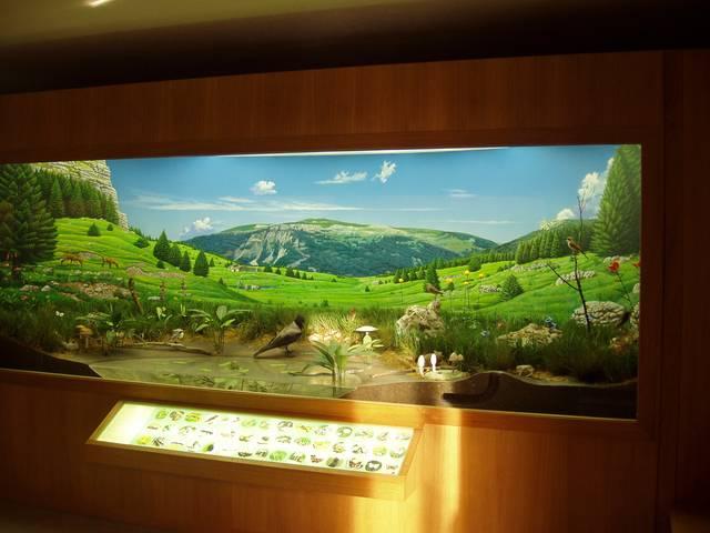 Museo naturalistico didattico Patrizio Rigoni di Asiago