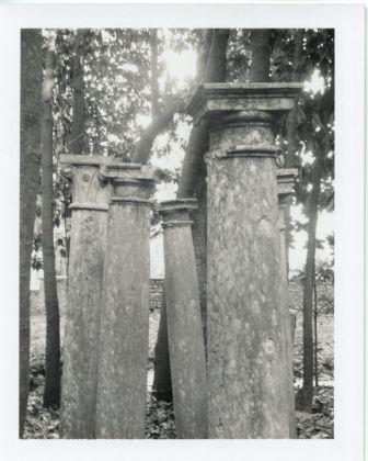 Patti Smith, Columns (Gabriele D'Annunzio's garden), 2003