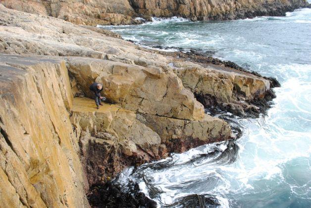 Rainer Krause, Grabaciones de sonidos costeros, Coliumo, Chile. Photo Oscar Concha, 2014