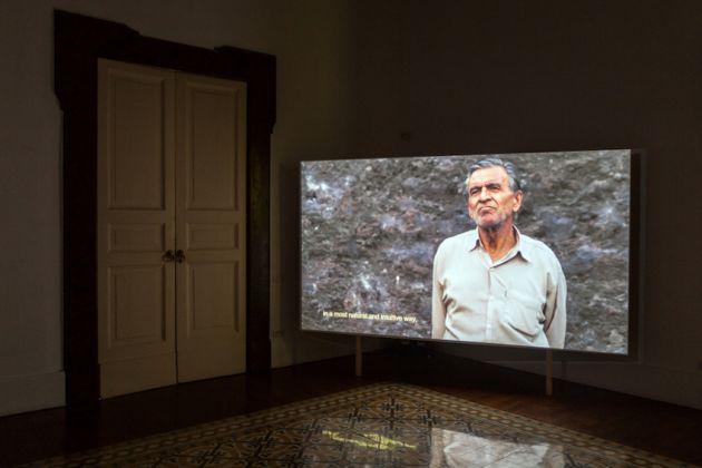 Shadi Harouni. An Index of Undesirable Elements. Exhibition view at Galleria Tiziana Di Caro, Napoli 2017
