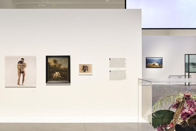 The Beguiling Siren is Thy Crest. Exhibition view at Museum on the Vistula, Varsavia 2017. Photo Jakub Certowicz