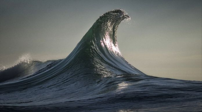 The Infinite Now. I cinemagraph di Armand Dijcks e Ray Collins