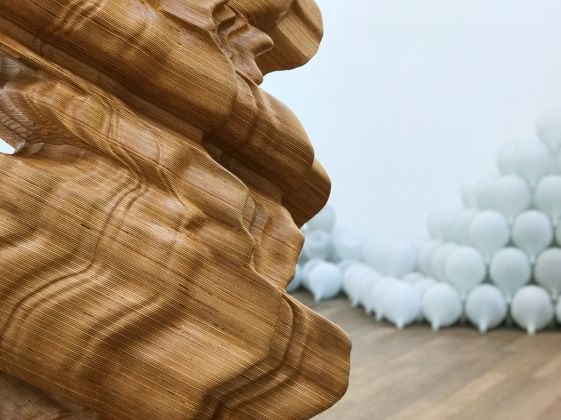 Tony Cragg. Exhibition view at MUDAM, Lussemburgo 2017. Photo Erika Pisa