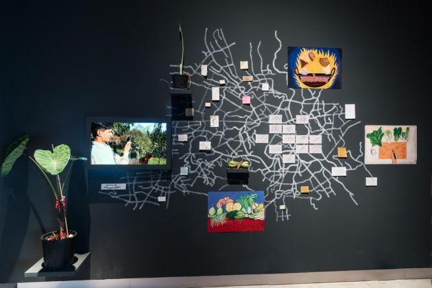 Leone Contini, Un popolo di trasmigratori, 2016, installazione, disegni, poster, placche metalliche dipinte, video, semi, piante