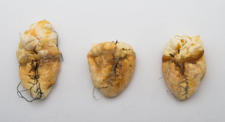 Giovanni Gaggia, Unus Papilio Erat. Collezione privata