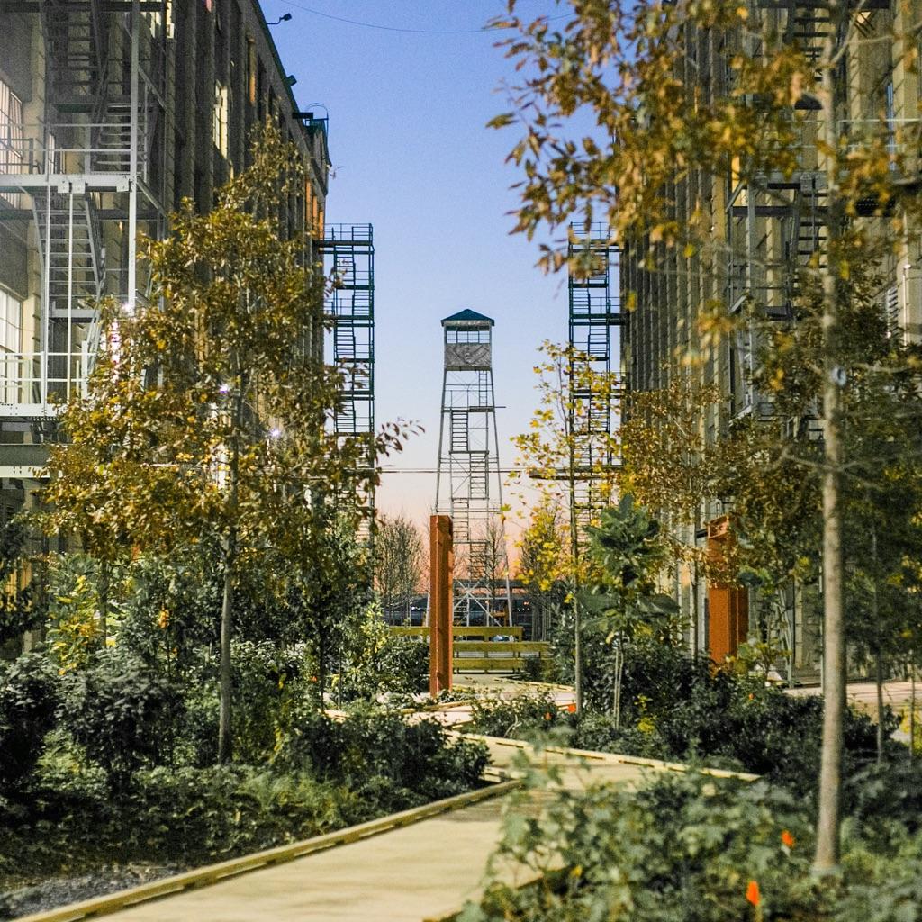 Industry City, Brooklyn, New York. Photo Claudia Zanfi. Courtesy Industry City. Garden
