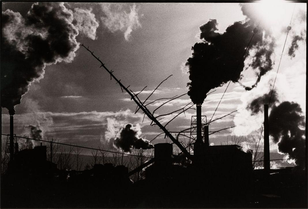 La forza delle immagini. Masahisa Fukase. Fondazione MAST, Bologna