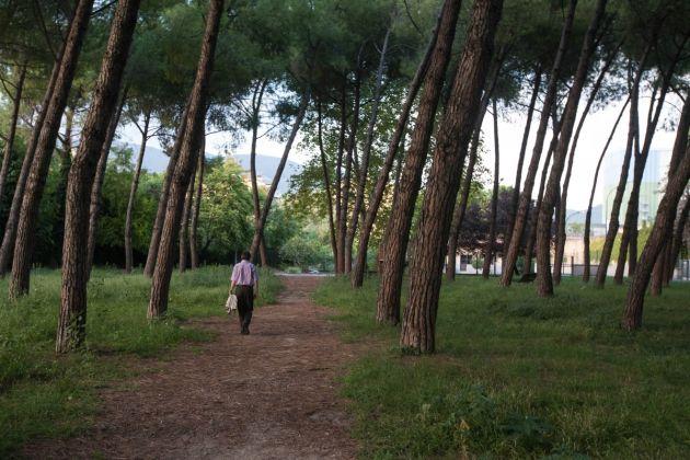 L'uomo che cammina. Photo Francesca Mautone