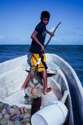 Valérian Mazataud, Pêche aux méduses à Kaukira, de la série « Liwa Mairin », 2015