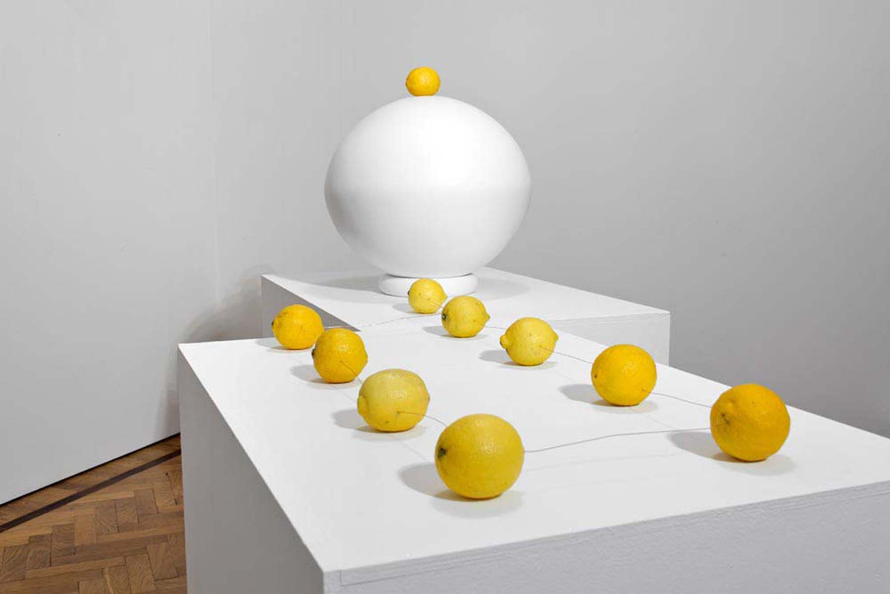 Michele Spanghero, Natura morta (Citron), 2013. Photo Silvia Longhi
