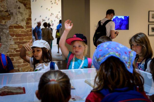 Programma Biennale Educational per alunni della scuola primaria, giugno 2017. Photo by Andrea Avezzù. Courtesy of La Biennale di Venezia
