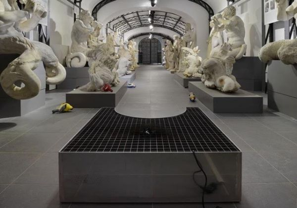 Benjamin Hirte, Chadwick Rantanen #2, 2017, installation view at Museo Pietro Canonica, Roma