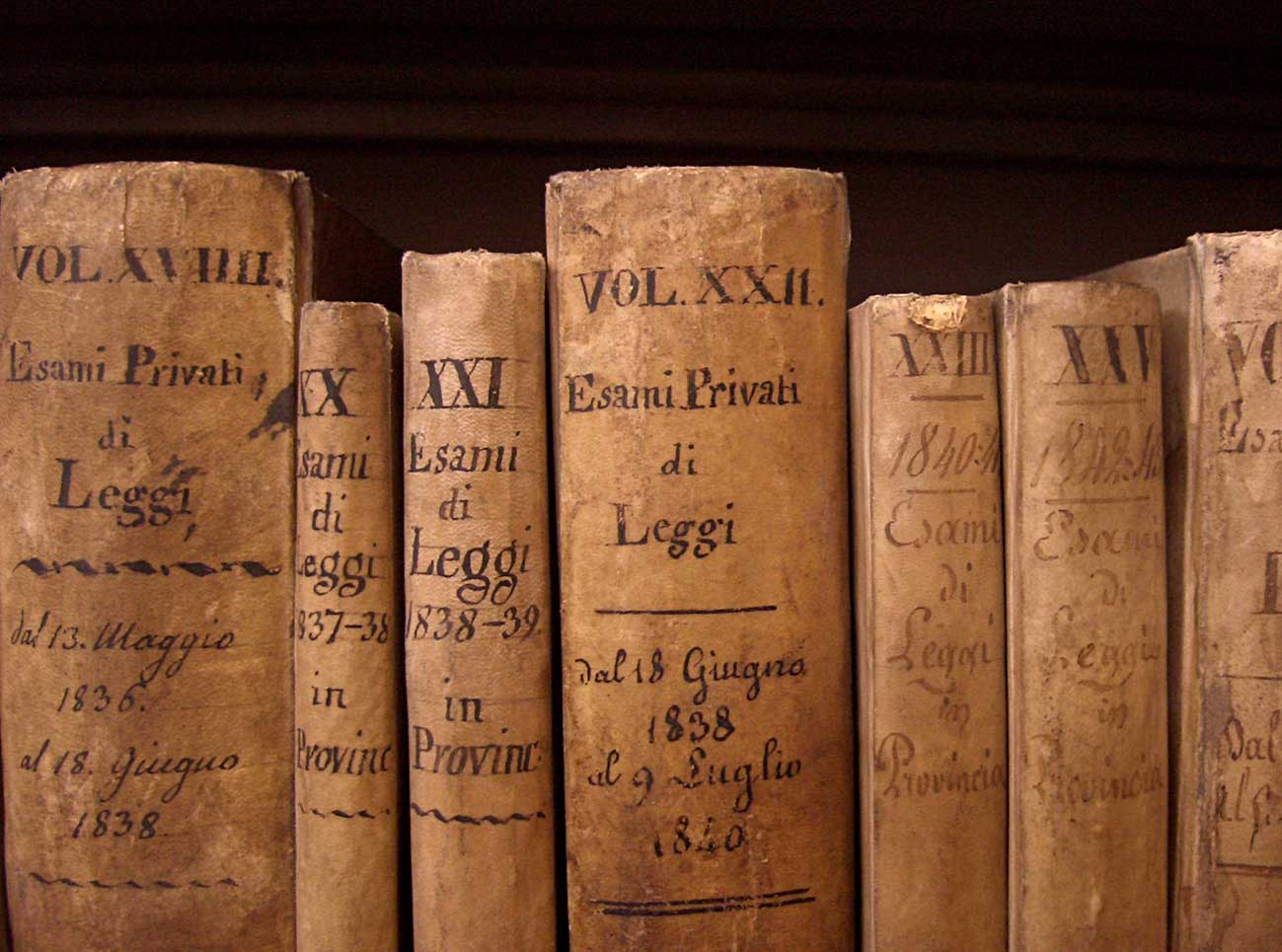 Dorsi di libri antichi