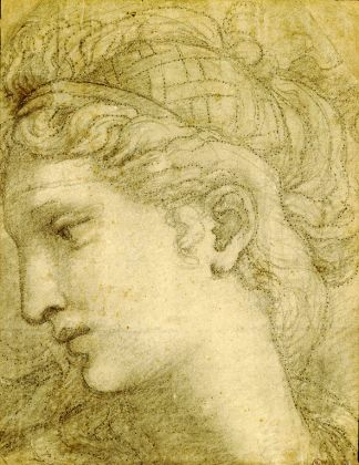 Giulio Romano, Testa femminile