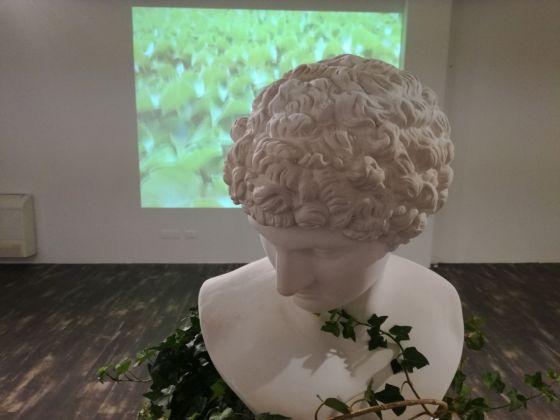Guillermina De Gennaro, Inglobe, exhibition view at Fondazione Museo Pino Pascali, Polignano a Mare 2017