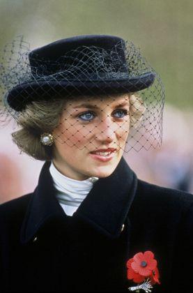 La Principessa Diana alla commemorazione dell'armistizio dell'11 novembre a Parigi, Anwar Hussein Collection
