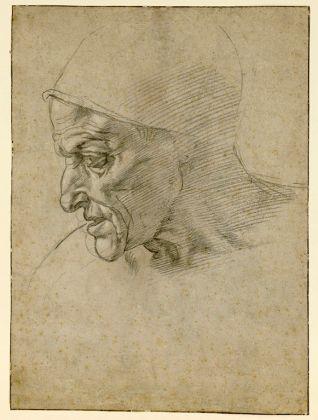 Michelangelo, Testa maschile di profilo