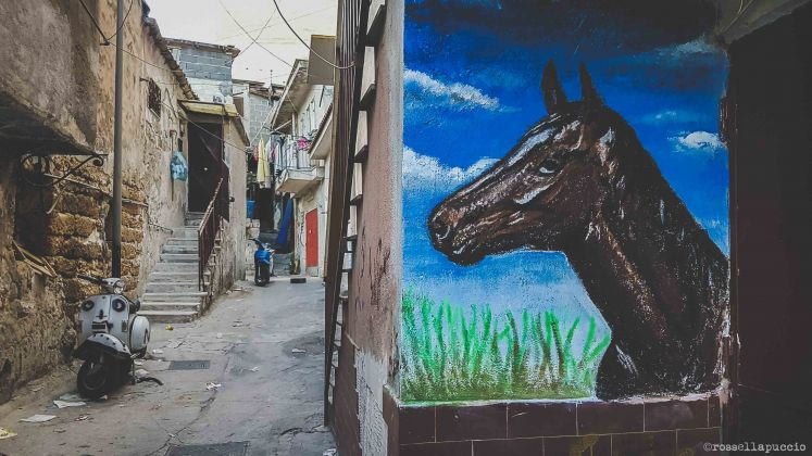 Opere di street art nascono nel quartiere Danisinni, Palermo, photo Rossella Puccio