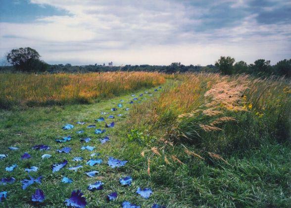Sandy Skoglund, As Far as the Eye Can See, 2001