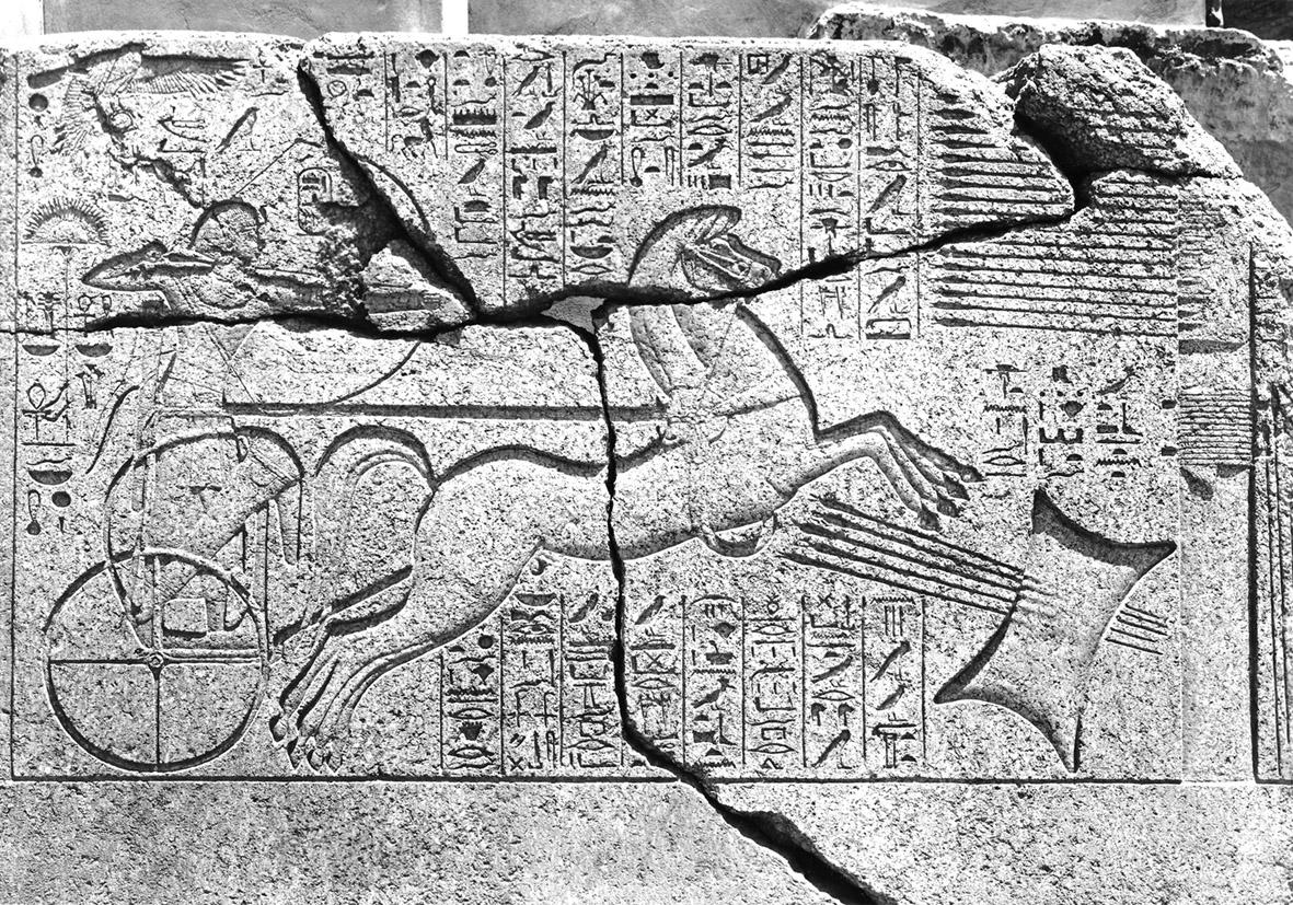 Amenofi II arciere (© Università degli Studi di Milano, Biblioteca e Archivi di Egittologia)