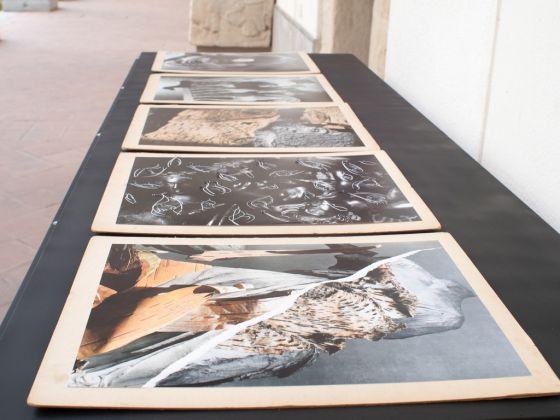 Andrew Mania, Untitled 02, 2017. Veduta dell'installazione al Museo Salinas di Palermo. Courtesy l'artista. Photo Costanza Arena e Roberto Salvaggio