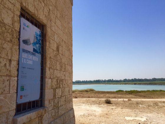 Area Marina Protetta e Riserva Naturale dello Stato, Torre Guaceto 2017