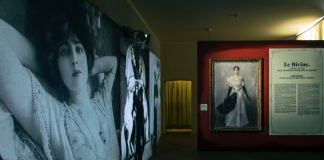 Giovanni Boldini. Exhibition view at Reggia di Venaria, 2017