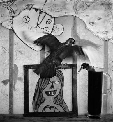 Roger Ballen, Window Shelf, 2012. Courtesy Galerie Karsten Greve, St. Moritz