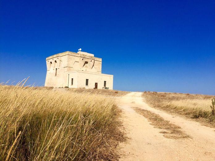 Torre Aragonese. Area Marina Protetta e Riserva Naturale dello Stato, Torre Guaceto 2017