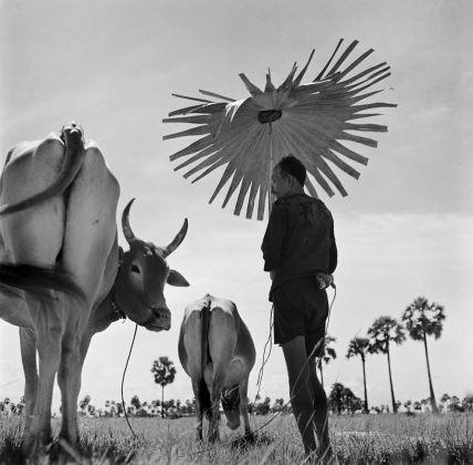 Werner Bischof, Cambodia, 1952. ©Werner Bischof Magnum Photos