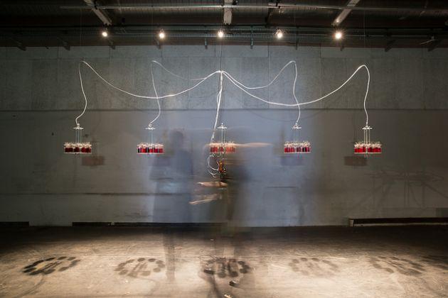Ars Electronica 2017. vtol, Until I Die. Photo Christopher Sonnleitner