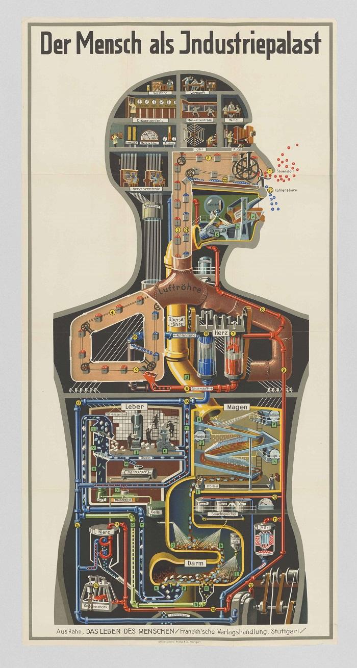 Der Mensch als Industriepalast (Man as Industrial Palace), pull-out poster from volume III of Fritz Kahn's Das Leben des Menschen (The Life of Man), 1926