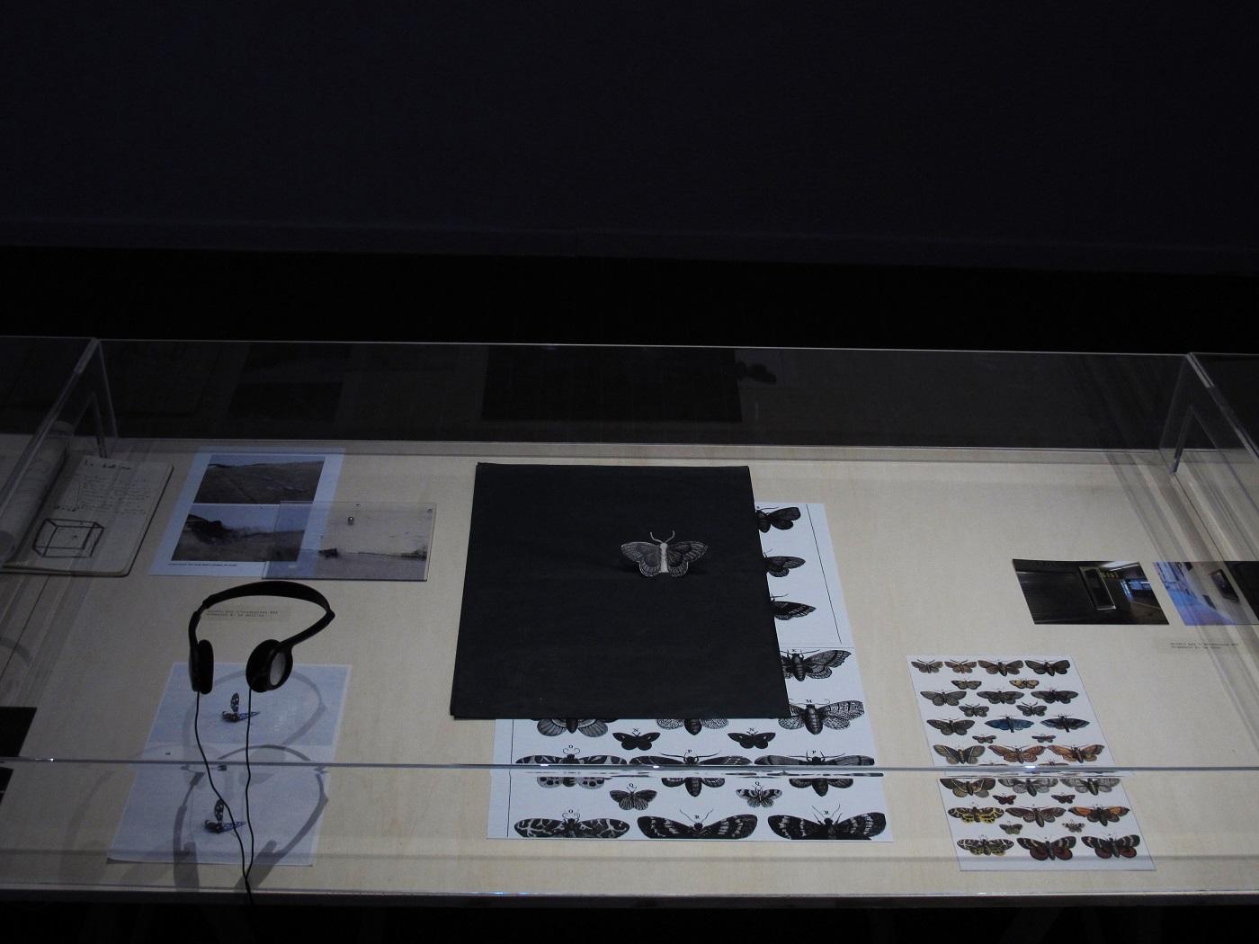 Gianni Moretti, La Bell'ra (studi per un monumento all'attenzione), 2013, progetto, materiali vari su tavolo, dimensioni variabili (dettaglio)