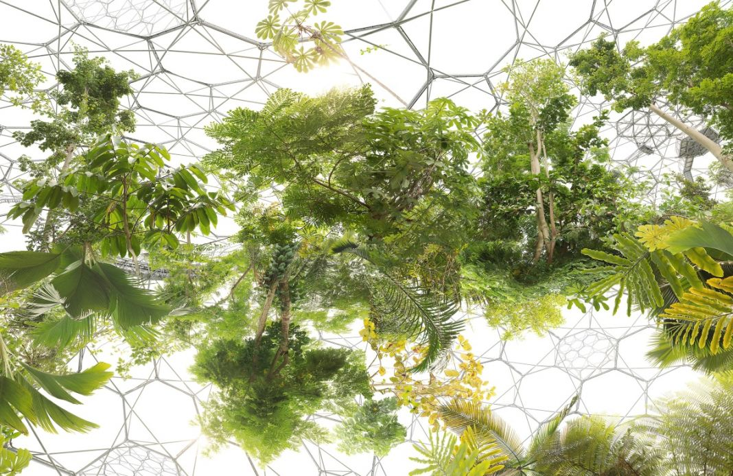 Michael Najjar, Space Garden, 2013, courtesy the artist