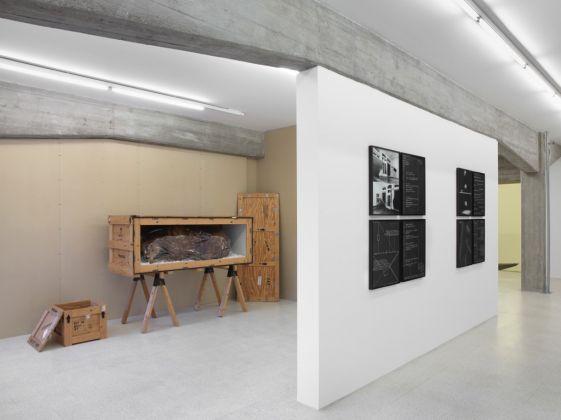 Collezione Maramotti. Vito Acconci, Mark Dion. Photo Dario Lasagni