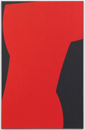 Livio Bernasconi, Immagine 18, 1987