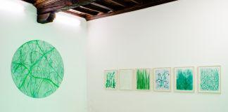 Thomas Berra. Verde Indagine. Exhibition view at Placentia Arte, Piacenza 2017