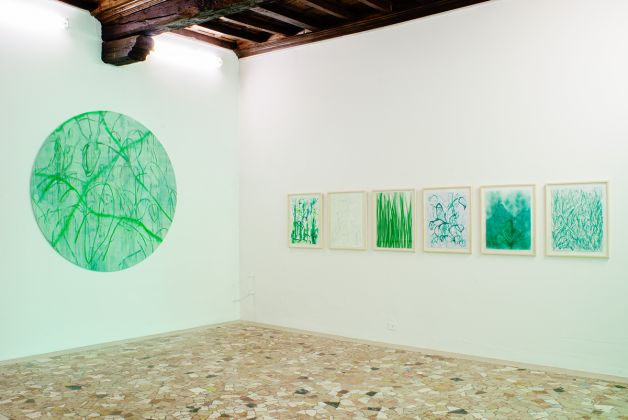 Thomas Berra. Verde Indagine. Exhibition view at Placentia Arte, Piacenza 2017