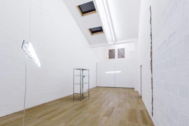 Tigers in Flip Flop, installation view, photo Nico Covre e Galleria Massimodeluca